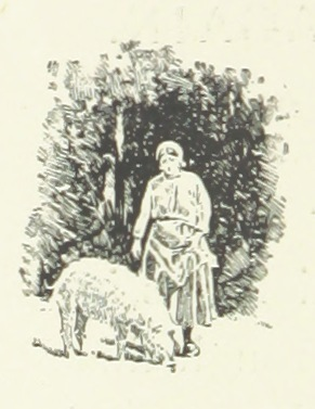 "sheep from ""Our Sentimental Journey through France and Italy. L.P"""