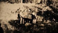 Krasnopol. Cmentarz żydowski. Kolekcja fotografii dokumentalnej – Polska. Pogranicze polsko-litewskie. [Dokument ikonograficzny]