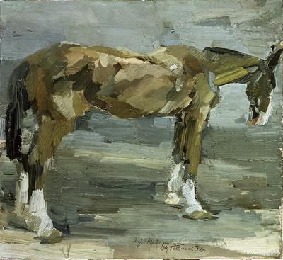 """Pferd """"Elster"""""""