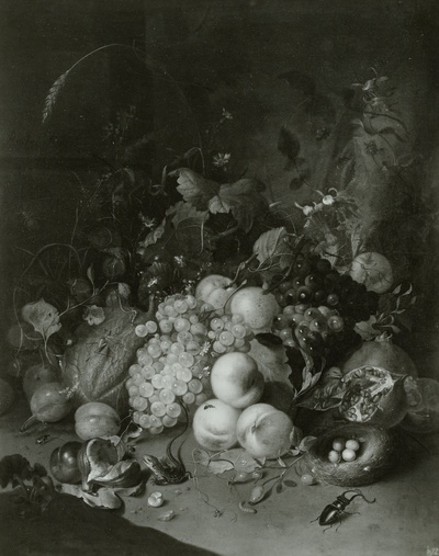 Fruchtstück mit dem Hirschkäfer