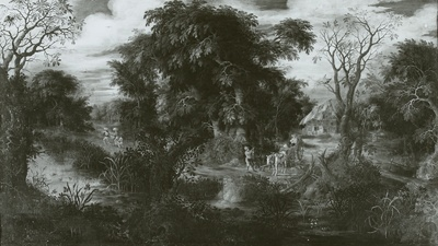 Waldweg am Wasser