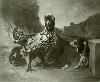 Hühnerhof unter Ruinen