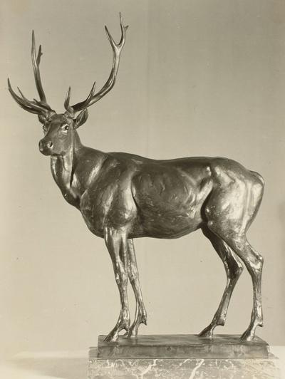 Hirsch (Modell zum Hirsch vor Hochhaus von Hirschfelde?)