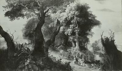 Waldweg über eine kleine Anhöhe