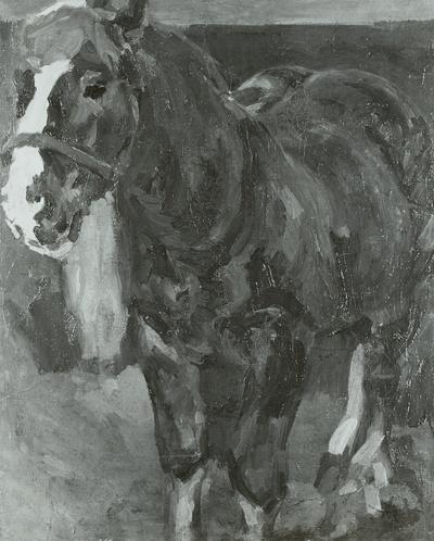 Braunes Pferd im Stall