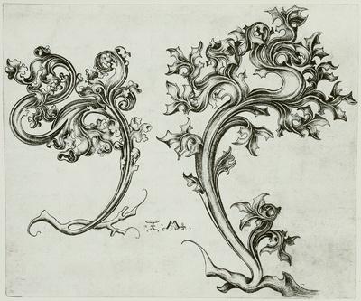Ornamentwurzeln