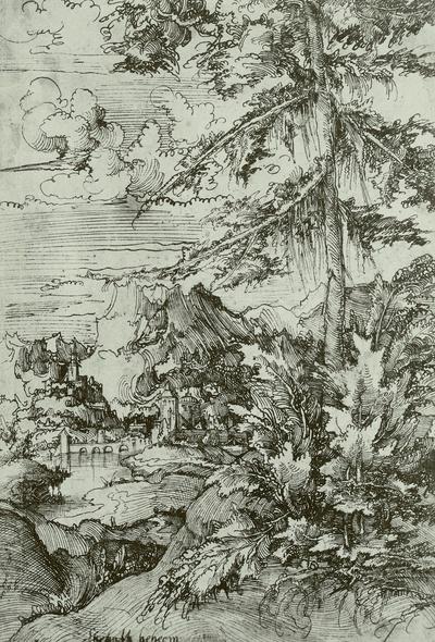 Gebirgslandschaft