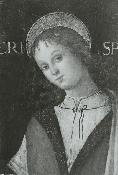 Der heilige Crispinus