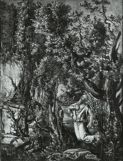 Der heilige Hieronymus büßend