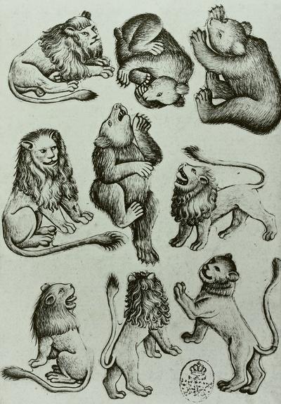 Löwen, Löwinnen und Bären (Raubtier-Neun)