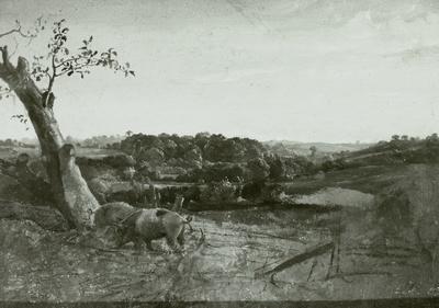 Baumlandschaft mit Schweinen
