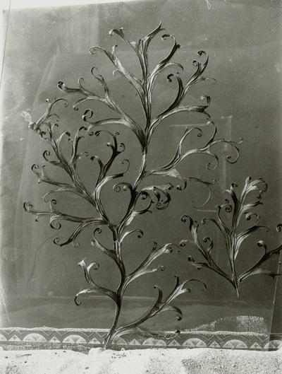 Rittersporn, (Delphinium sp.), getrocknetes Blatt
