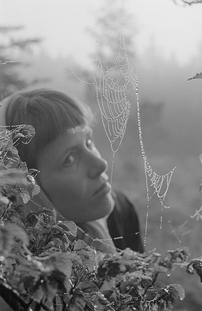 Renate Rössing hinter einem Spinnennetz