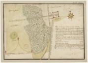 Plan de la coupe du bois du petit Chaillot.. . suivant l'arpentage qui en a été fait par Camus géographe de Monseigneur le duc de Penthièvre ce 29e avril 1739