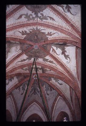 Image from object titled Celje - Cerkev sv. Danijela, fotografija