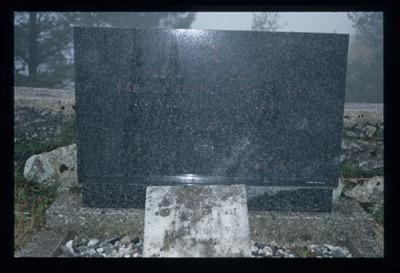 Image from object titled Trava - Grob borcev NOB na pokopališču, fotografija