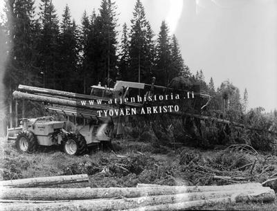 Puuta karsitaan ja katkotaan Valmet 880 S monitoimikoneella.