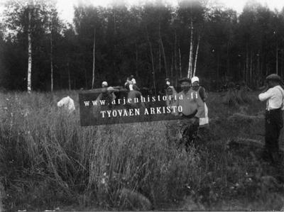 Kauranleikkuutalkoot 1920-1930-luvulla.