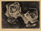 Fotografia ravvicinata di quattro rose, scattata da Peretti-Griva, di grande effetto artistico per la sgranatura dell'immagine in cui i fiori chiari tendono a confondersi con l'ombra che fa da sfondo