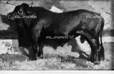 The Black Bull, painting by Giovanni Fattori, formerly part of the Carnielo Collection, Florence, Tuscany