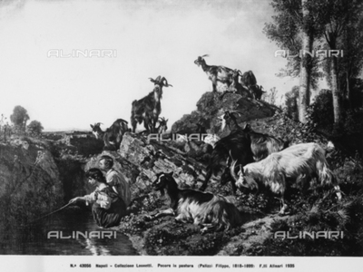 Sheep grazing, painting by Filippo Palizzi, in the Leonetti Collection, in Naples