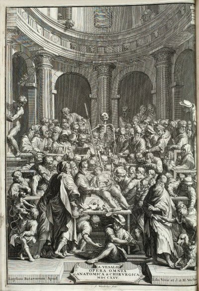 Image from object titled Vesalius, Andreas. Andreae Vesalii Opera omnia anatomica et chirurgica. Cura Hermanni Boerhaave et Bernhardi Siegfried Albini; Public dissection in an anatomy theatre