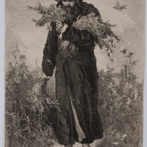 Rabbi Todros