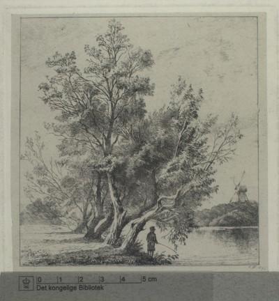 Piletræer ved Stadsgraven, 1873