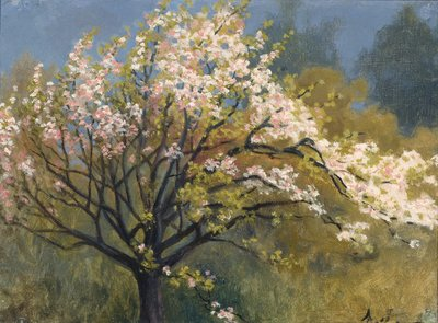 Image from object titled Fruit Tree in Blossom