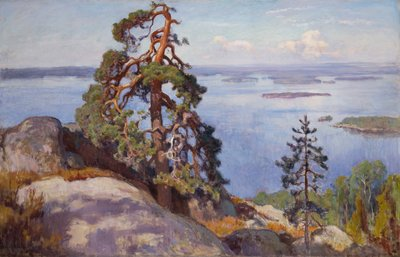 Image from object titled Landscape from Koli