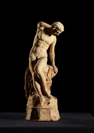 Narcissus, sketch