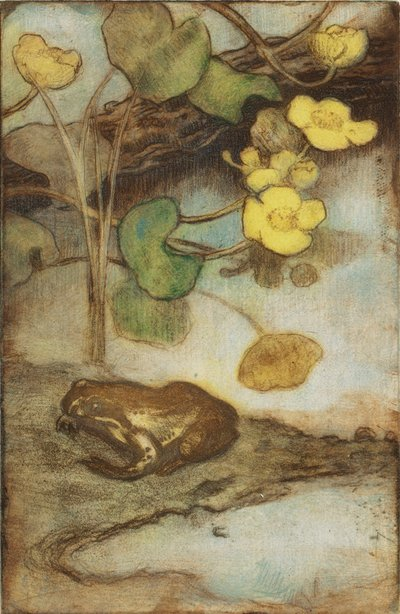 Image from object titled Frog with Marsh Marigold