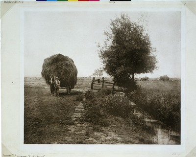 In the Haysel; Pictures of East Anglian Life