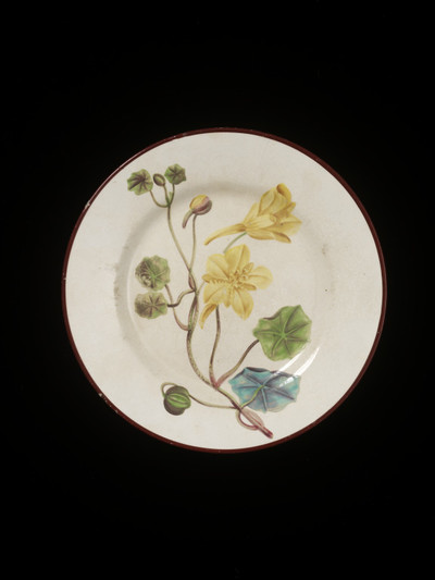 Image from object titled Plate, creamware, painted in enamels with Indian Cress plant, Swansea Pottery, decorated by Thomas Pardoe, ca. 1800