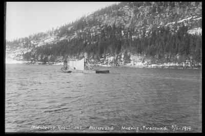 Image from object titled Arendal Fossekompani i begynnelsen av 1900-tallet