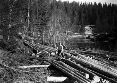 Barking av tømmer ved Leirelva