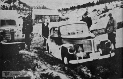 (Bilder trykt i Romsdal Folkeblad 29