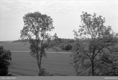 Arkeologisk utredning, Blinge Ekeby, Blinge - Europeana