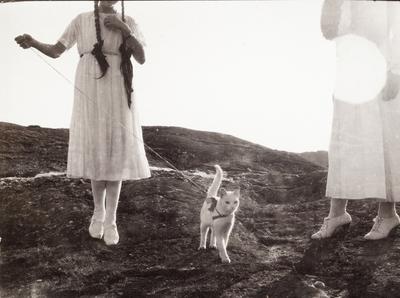 Två flickor i ljusa sommarklänningar (ansiktena utanför bild) med en vit katt i koppel. Fiskebäckskil, Bohuslän.