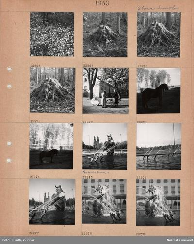 Eliasson - Public Member Photos & Scanned - Search