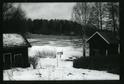 Badelunda sn, Södra Björnön. Södra Björnö 1:1, f.d. Fiskartorpet Halsen, översiktsbild mot nordost. 1998.