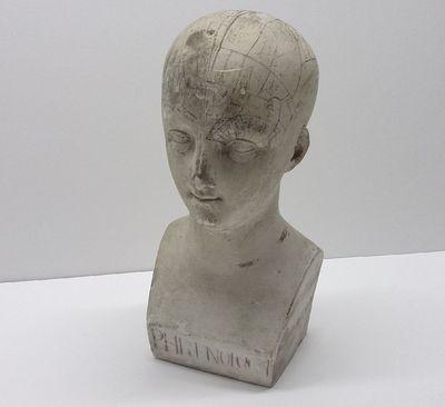 Frenologische buste