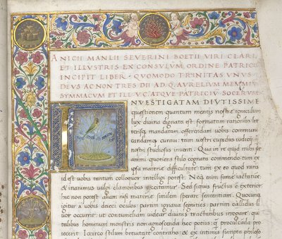 Initial from BL Lansdowne 842, f. 2