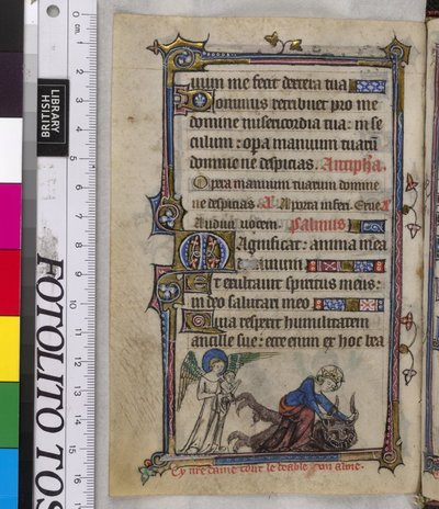 Image from object titled Virgin Mary and the devil from BL YT 13, f. 155v