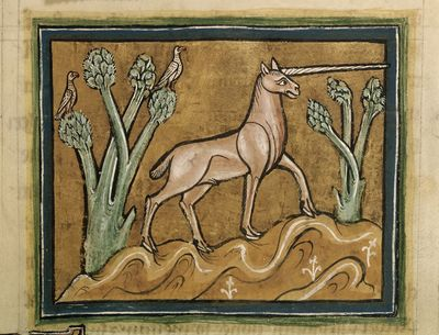 Image from object titled Unicorn from BL Royal 12 F XIII, f. 21