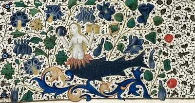 Image from object titled Mermaid from BL Harley 4372, f. 79v