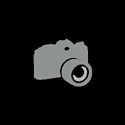 Image from object titled Elamu põhiplaan ja pikilõige