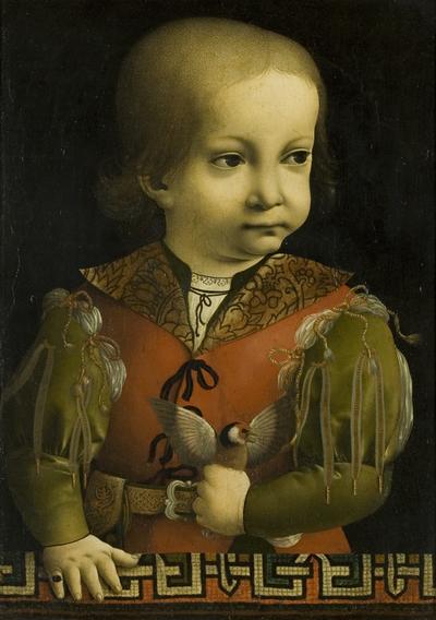 Portrait of Francesco Maria Sforza, known as 'Il Duchetto'