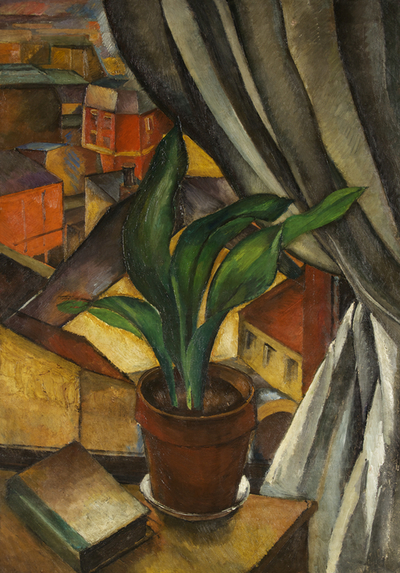 Image from object titled The Aspidistra