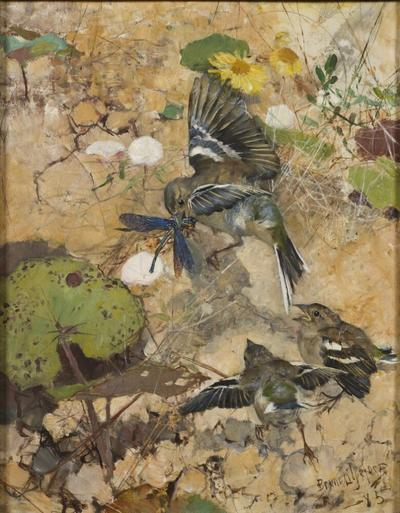 Image from object titled Chaffinches and Dragonflies. Five studies in one frame, NM 2223-2227